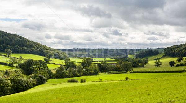 Panorama of welsh countryside Stock photo © backyardproductions