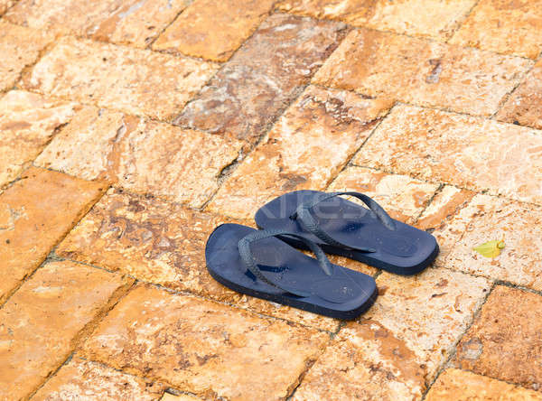 Discarded flipflops on paved deck by pool Stock photo © backyardproductions