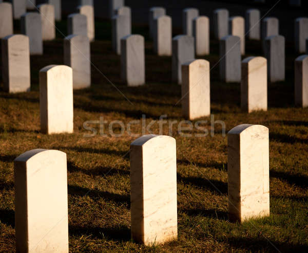 Row of grave stones in Arlington Stock photo © backyardproductions