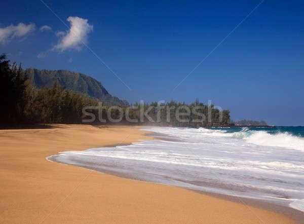 Waves over beach on Lumahai Stock photo © backyardproductions
