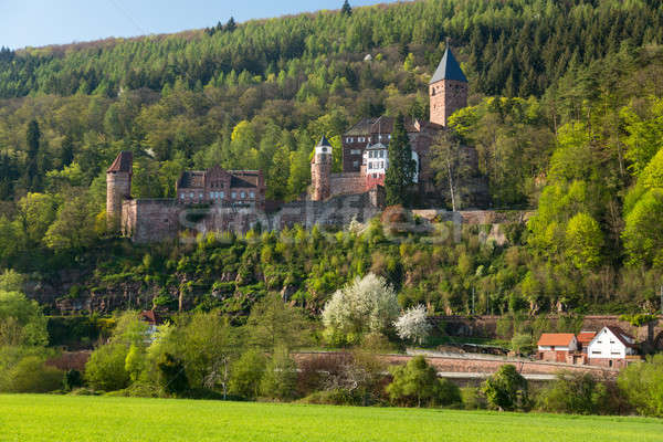 Castle at Zwingenberg in Germany Stock photo © backyardproductions