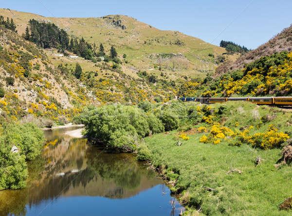 Spoorweg track omhoog New Zealand trein toeristische Stockfoto © backyardproductions