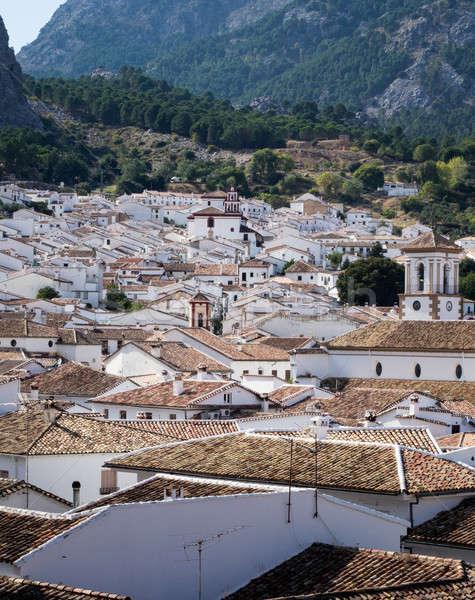 Híres öreg Andalúzia fehér festett lakások Stock fotó © backyardproductions