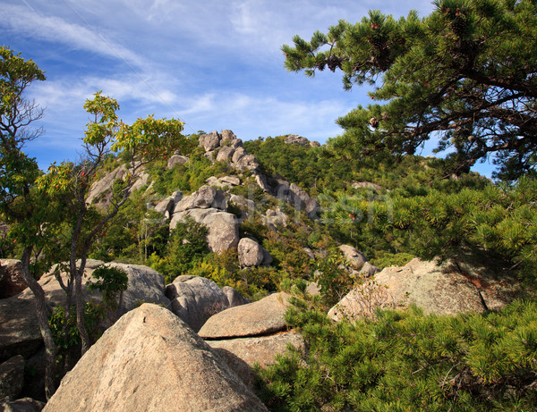 Oude vod parcours vallei rotsen klim Stockfoto © backyardproductions