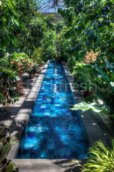 Hdr kép medence üvegház kék fényes Stock fotó © backyardproductions