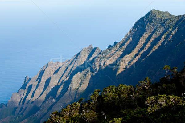 Overview of Na Pali Coast Stock photo © backyardproductions