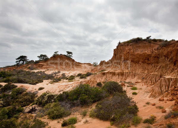 Broken Hill in Torrey Pines State Park Stock photo © backyardproductions