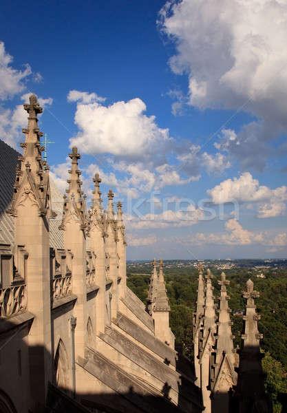 Exterior carvings of Washington Cathedral Stock photo © backyardproductions