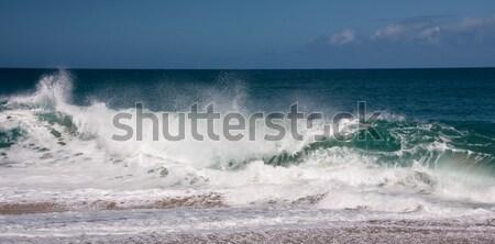 Waves breaking on sandy beach Stock photo © backyardproductions