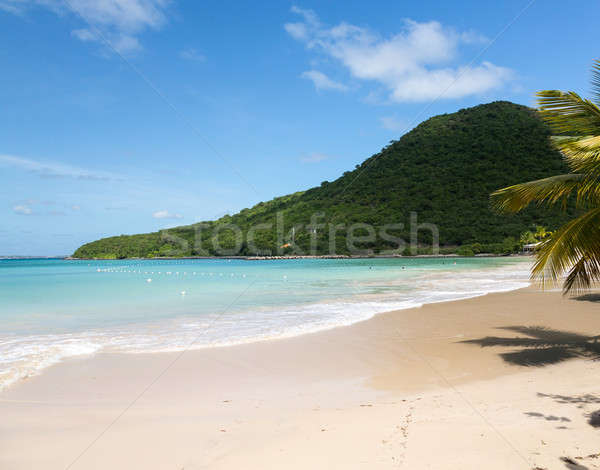 Glorious beach at Anse Marcel on St Martin Stock photo © backyardproductions