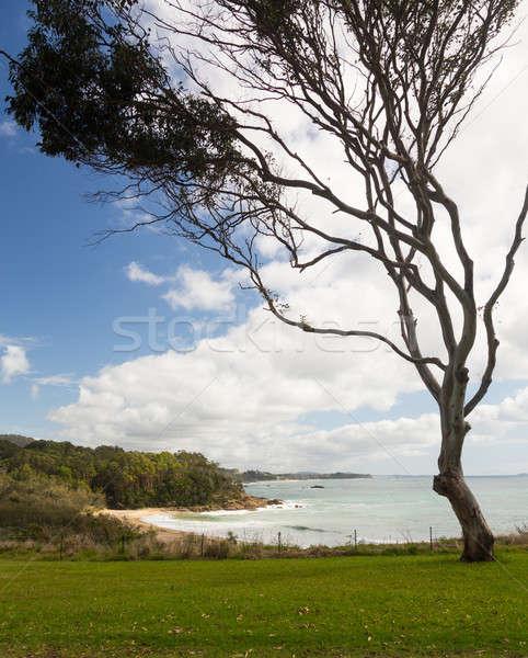 Playa norte puerto Australia pequeño abandonado Foto stock © backyardproductions