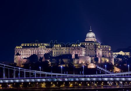 Buda Castle at night in Budapest Stock photo © backyardproductions
