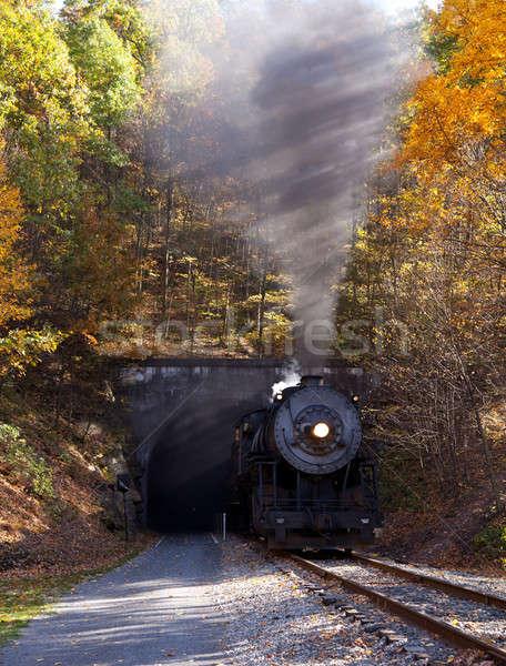 Steam locomotive leaving tunnel Stock photo © backyardproductions