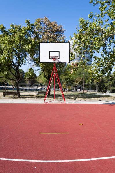 Basketbol sahası çim Bina spor basketbol alan Stok fotoğraf © badmanproduction