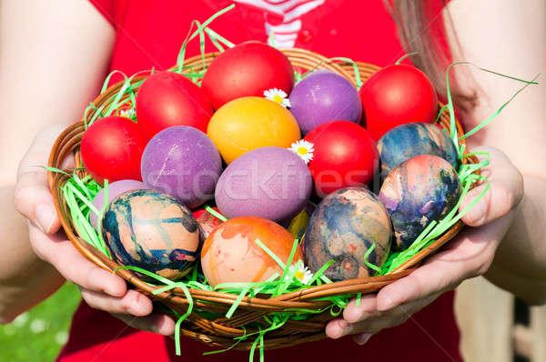 Eggs basket Stock photo © badmanproduction