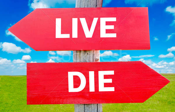Live or die  Stock photo © badmanproduction