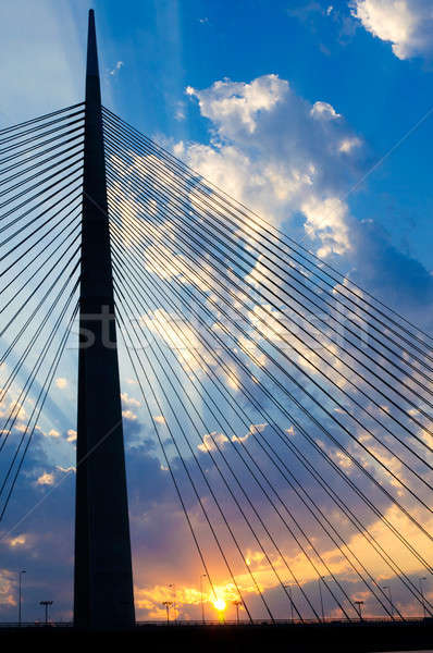 Nouvelle pont Belgrade ville nuit Skyline Photo stock © badmanproduction