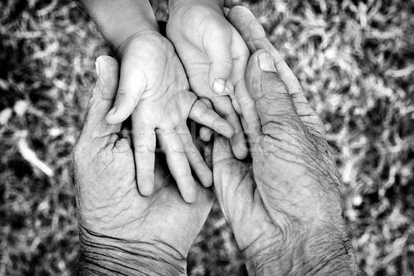 Young and old hands Stock photo © badmanproduction