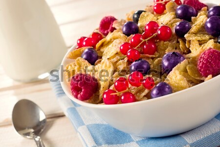 Gabonafélék bogyós gyümölcs tál szelektív fókusz töltött étel Stock fotó © badmanproduction