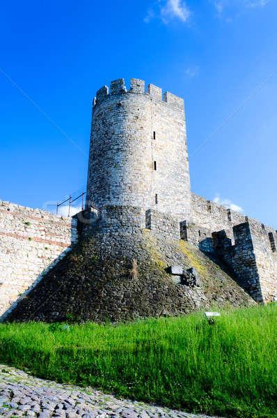Old castle Stock photo © badmanproduction