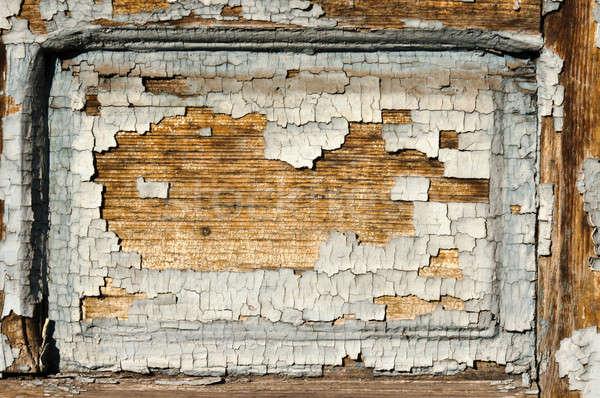 Sérült fa természet háttér klasszikus antik Stock fotó © badmanproduction