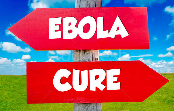 Ebola concept Stock photo © badmanproduction