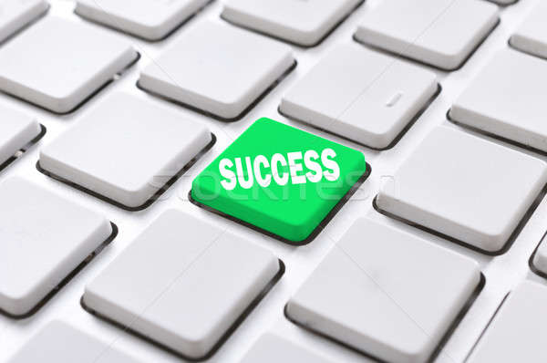 Success button Stock photo © badmanproduction