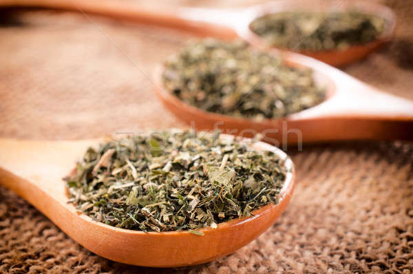 Oregano Spice gezondheid ruimte plant Stockfoto © badmanproduction