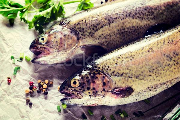 Ruw makreel vis selectieve aandacht hoofd Stockfoto © badmanproduction