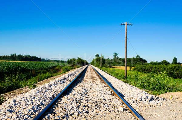 Railroad to somewhere Stock photo © badmanproduction