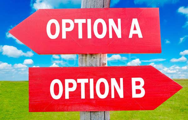 Opció választás mutat stratégia apró természet Stock fotó © badmanproduction