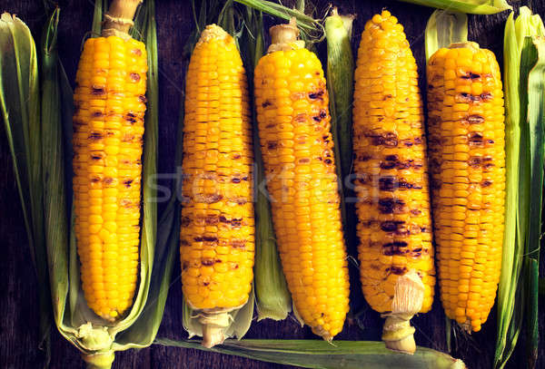 Corn background Stock photo © badmanproduction