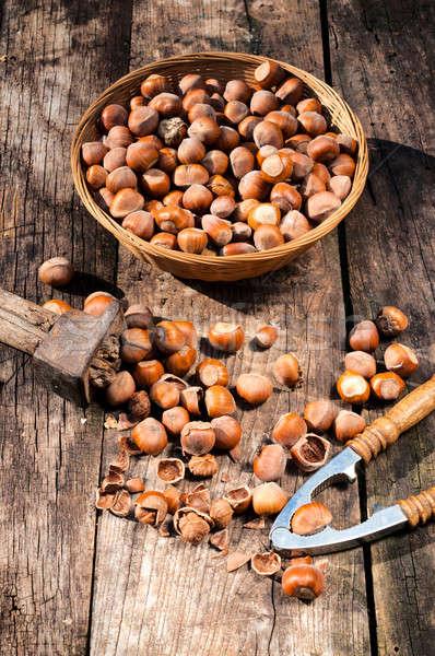 Homegrown hazelnuts Stock photo © badmanproduction