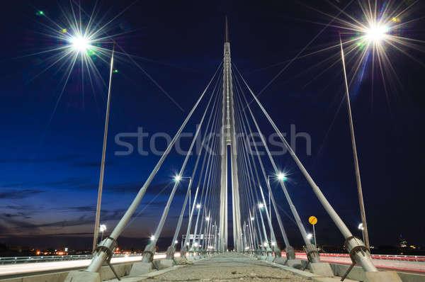 Pont nuit Belgrade bâtiment ville paysage Photo stock © badmanproduction