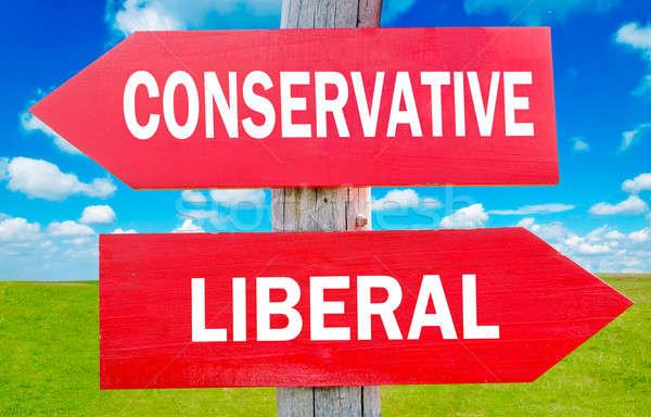 Konzervatív választás mutat stratégia apró fű Stock fotó © badmanproduction