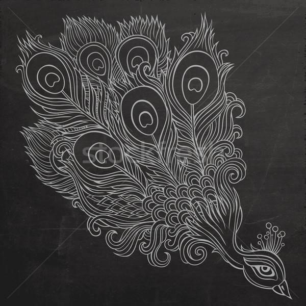 Decorativo pavão quadro-negro abstrato vetor Foto stock © balabolka