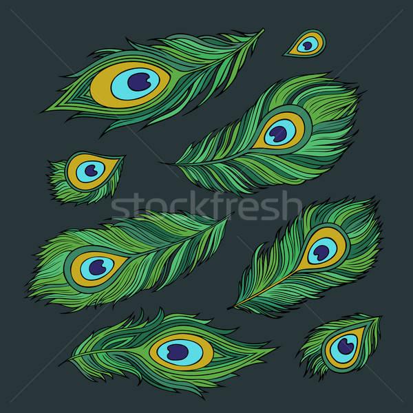 Paon vecteur résumé vert Photo stock © balabolka
