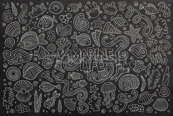 Pizarra establecer marinos vida objetos vector Foto stock © balabolka