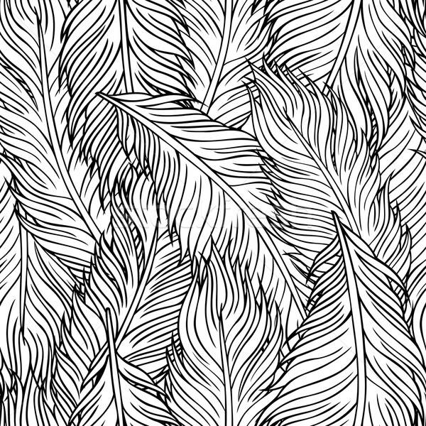hand-drawn feathers Stock photo © balabolka