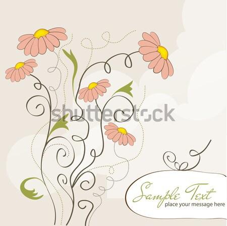 Vector schoonheid retro kaart nota Stockfoto © balasoiu