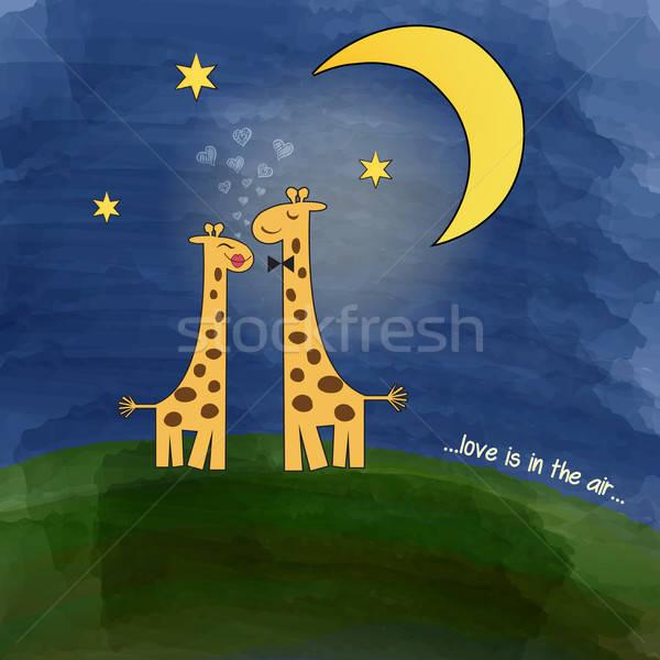giraffes in love at night on a meadow Stock photo © balasoiu