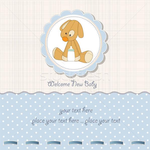 baby shower card with puppy Stock photo © balasoiu