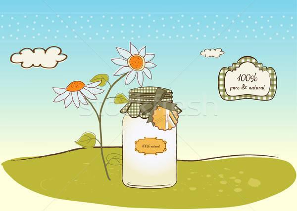 Zuiver biologisch voedsel jar vector formaat Stockfoto © balasoiu