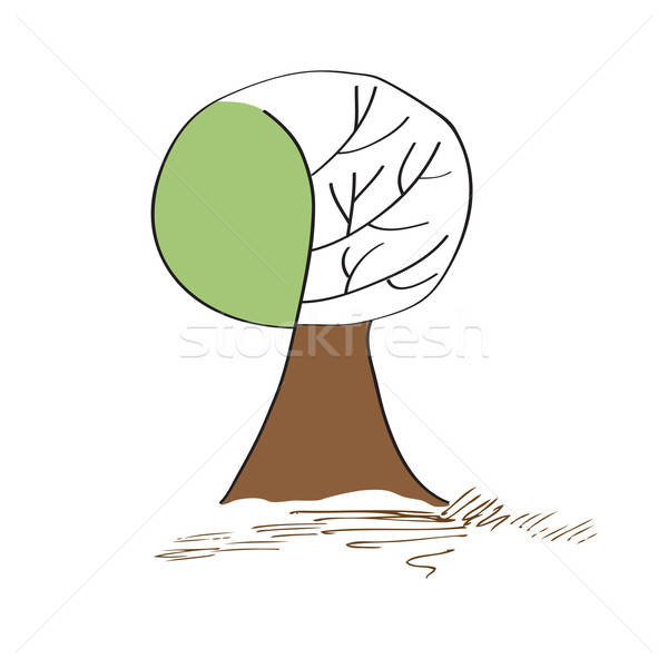 stylized vector tree Stock photo © balasoiu