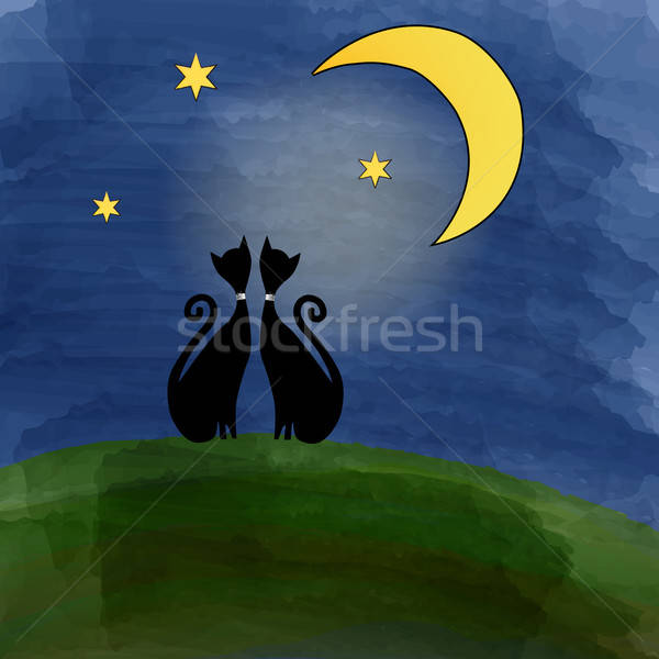 Stock photo: two cats on a meadow under the moon