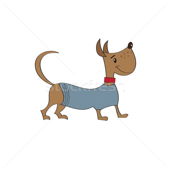 puppy dressed in fancy winter jacket Stock photo © balasoiu