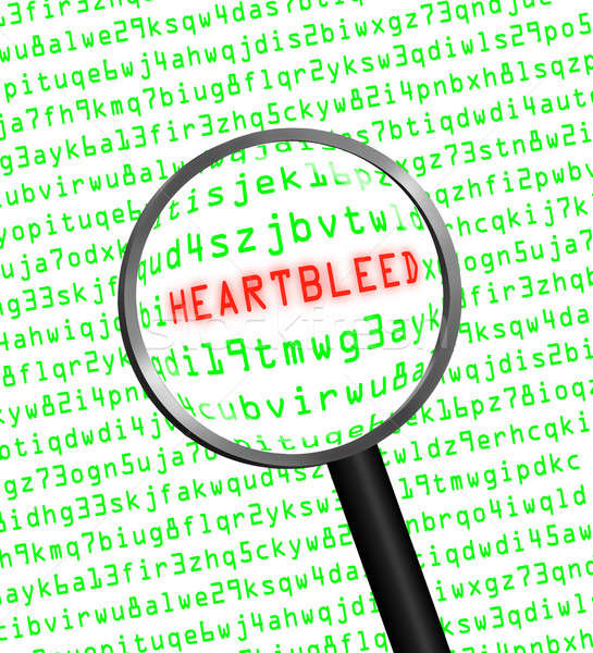 Heartbleed revealed in computer code through a magnifying glass  Stock photo © Balefire9