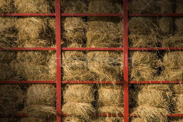 Hay bales piled within a cart lit diagonally Stock photo © Balefire9