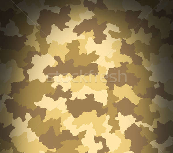 Desert camouflage pattern from above Stock photo © Balefire9
