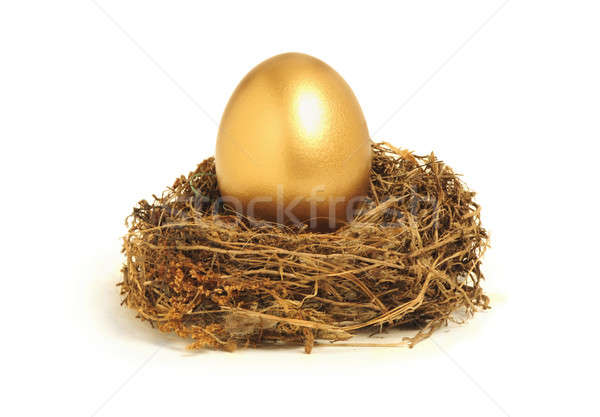 Golden nest egg representing retirement savings Stock photo © Balefire9